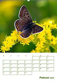 Schmetterlinge in deutschen Gärten (Wandkalender 2019 DIN A2 hoch) - Produktdetailbild 2