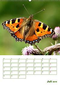 Schmetterlinge in deutschen Gärten (Wandkalender 2019 DIN A2 hoch) - Produktdetailbild 7