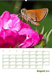 Schmetterlinge in deutschen Gärten (Wandkalender 2019 DIN A2 hoch) - Produktdetailbild 8