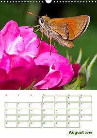 Schmetterlinge in deutschen Gärten (Wandkalender 2019 DIN A3 hoch) - Produktdetailbild 8