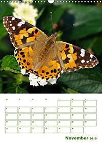 Schmetterlinge in deutschen Gärten (Wandkalender 2019 DIN A3 hoch) - Produktdetailbild 11