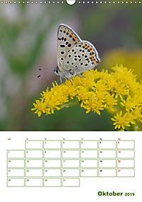 Schmetterlinge in deutschen Gärten (Wandkalender 2019 DIN A3 hoch) - Produktdetailbild 10