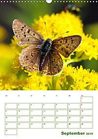 Schmetterlinge in deutschen Gärten (Wandkalender 2019 DIN A3 hoch) - Produktdetailbild 9