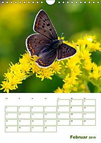 Schmetterlinge in deutschen Gärten (Wandkalender 2019 DIN A4 hoch) - Produktdetailbild 2