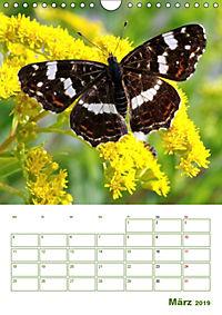 Schmetterlinge in deutschen Gärten (Wandkalender 2019 DIN A4 hoch) - Produktdetailbild 3