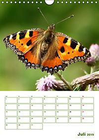 Schmetterlinge in deutschen Gärten (Wandkalender 2019 DIN A4 hoch) - Produktdetailbild 7