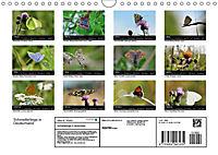 Schmetterlinge in Deutschland (Wandkalender 2019 DIN A4 quer) - Produktdetailbild 13