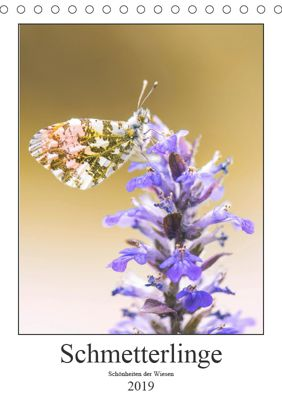 Schmetterlinge - Schönheiten der Wiesen (Tischkalender 2019 DIN A5 hoch), Andreas Vomacka