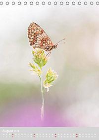 Schmetterlinge - Schönheiten der Wiesen (Tischkalender 2019 DIN A5 hoch) - Produktdetailbild 8