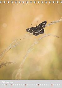 Schmetterlinge - Schönheiten der Wiesen (Tischkalender 2019 DIN A5 hoch) - Produktdetailbild 10