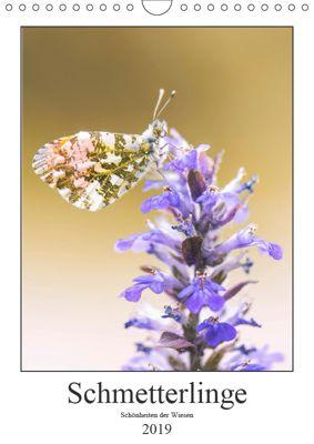 Schmetterlinge - Schönheiten der Wiesen (Wandkalender 2019 DIN A4 hoch), Andreas Vomacka