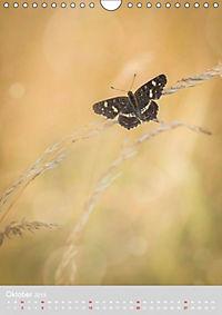 Schmetterlinge - Schönheiten der Wiesen (Wandkalender 2019 DIN A4 hoch) - Produktdetailbild 10