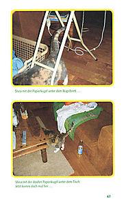Schmitz' Katze - Produktdetailbild 4