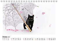 Schmusige Britisch Kurzhaar (Tischkalender 2019 DIN A5 quer) - Produktdetailbild 10