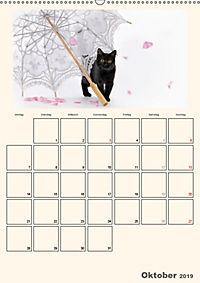 Schmusige Britisch Kurzhaar (Wandkalender 2019 DIN A2 hoch) - Produktdetailbild 10