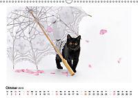 Schmusige Britisch Kurzhaar (Wandkalender 2019 DIN A3 quer) - Produktdetailbild 10