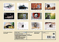 Schmusige Britisch Kurzhaar (Wandkalender 2019 DIN A3 quer) - Produktdetailbild 13