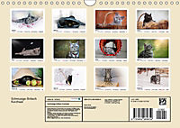 Schmusige Britisch Kurzhaar (Wandkalender 2019 DIN A4 quer) - Produktdetailbild 13