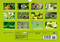 Schnecke, Käfer und Co (Wandkalender 2019 DIN A4 quer) - Produktdetailbild 13