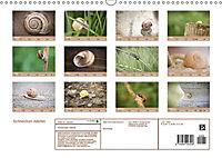 Schnecken Allerlei (Wandkalender 2019 DIN A3 quer) - Produktdetailbild 13