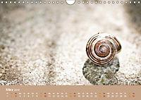 Schnecken Allerlei (Wandkalender 2019 DIN A4 quer) - Produktdetailbild 3