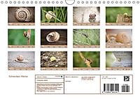 Schnecken Allerlei (Wandkalender 2019 DIN A4 quer) - Produktdetailbild 13