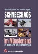 Schneechaos im Münsterland in Bildern und Berichten