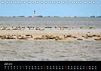 schöne Küsten (Tischkalender 2019 DIN A5 quer) - Produktdetailbild 7