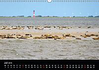 schöne Küsten (Wandkalender 2019 DIN A3 quer) - Produktdetailbild 5