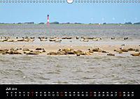 schöne Küsten (Wandkalender 2019 DIN A3 quer) - Produktdetailbild 7