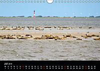 schöne Küsten (Wandkalender 2019 DIN A4 quer) - Produktdetailbild 7