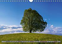 Schöne Wanderungen um Oberstdorf (Wandkalender 2019 DIN A4 quer) - Produktdetailbild 4