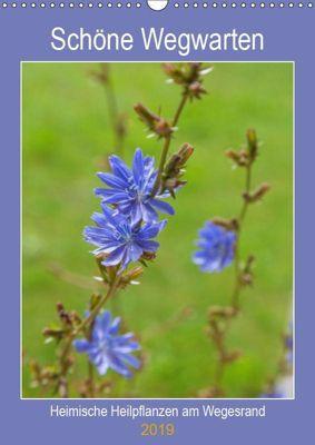 Schöne Wegwarten. Heimische Heilpflanzen am Wegesrand (Wandkalender 2019 DIN A3 hoch), Hanna Wagner