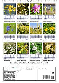 Schöne Wegwarten. Heimische Heilpflanzen am Wegesrand (Wandkalender 2019 DIN A3 hoch) - Produktdetailbild 1