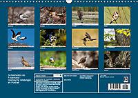 Schönheiten im Federkleid - Heimische Wildvögel im Portrait (Wandkalender 2019 DIN A3 quer) - Produktdetailbild 13