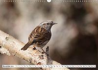 Schönheiten im Federkleid - Heimische Wildvögel im Portrait (Wandkalender 2019 DIN A3 quer) - Produktdetailbild 11
