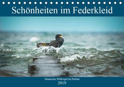 Schönheiten im Federkleid - Heimische Wildvögel im Portrait (Tischkalender 2019 DIN A5 quer), Sabine Grahneis