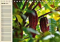 Schokolade. Von der Kakaobohne zur Köstlichkeit (Tischkalender 2019 DIN A5 quer) - Produktdetailbild 1