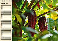 Schokolade. Von der Kakaobohne zur Köstlichkeit (Wandkalender 2019 DIN A4 quer) - Produktdetailbild 1