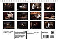 Schokoladige Britisch Kurzhaar Katzen (Wandkalender 2019 DIN A4 quer) - Produktdetailbild 13