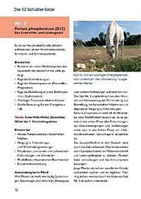 Schüssler-Salze für Pferd und Reiter - Produktdetailbild 2