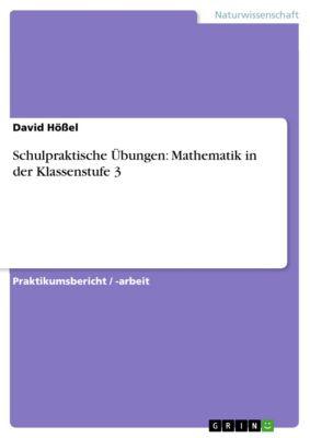 Schulpraktische Übungen: Mathematik in der Klassenstufe 3, David Hößel