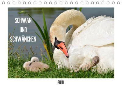 SCHWAN UND SCHWÄNCHEN (Tischkalender 2019 DIN A5 quer), Marlise Gaudig