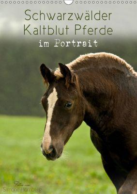 Schwarzwälder Kaltblut Pferde im Portrait (Wandkalender 2019 DIN A3 hoch), Simone Homberg