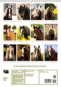 Schwarzwälder Kaltblut Pferde im Portrait (Wandkalender 2019 DIN A3 hoch) - Produktdetailbild 13