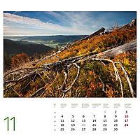 Schwarzwald 2019 - Produktdetailbild 6