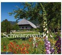 Schwarzwald 2019