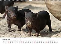 Schwein gehabt! (Wandkalender 2019 DIN A3 quer) - Produktdetailbild 8