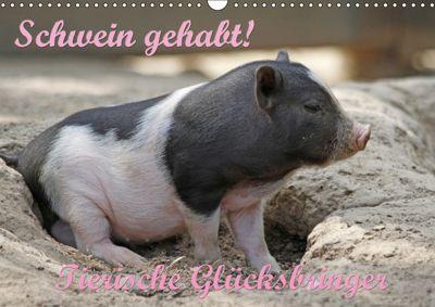 Schwein gehabt! (Wandkalender 2019 DIN A3 quer), Antje Lindert-Rottke