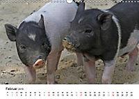 Schwein gehabt! (Wandkalender 2019 DIN A3 quer) - Produktdetailbild 2